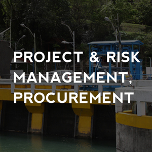 Project and Risk Management Procurement