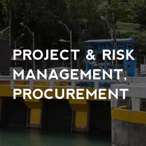 Project and Risk Management Procurement